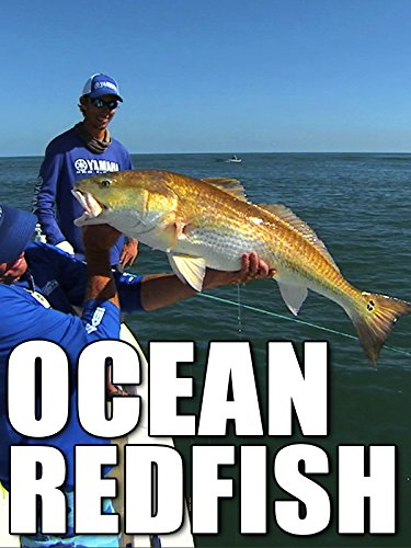 Clip: Ocean Redfish [OV] (Port Canaveral)