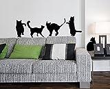 Decoramo Wandtattoos Wanddeko Katzen, PVC, schwarz, 120x 0.1x 30cm