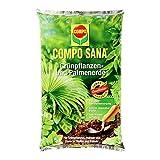 COMPO SANA® Grünpflanzen- und Palmenerde, hochwertige Spezialerde für alle Grünpflanzen, Palmen und Farne in Töpfen und Kübeln