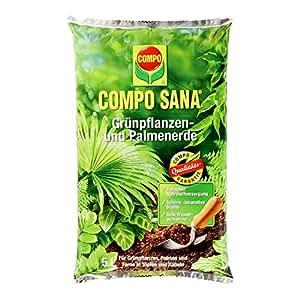 COMPO SANA Grünpflanzen- und Palmenerde mit 8 Wochen