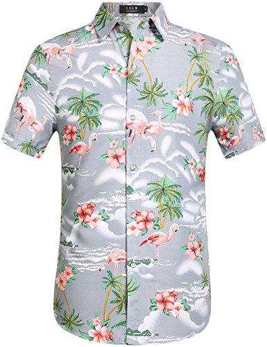 Schwarzes Hawaii-aloha-shirt (SSLR Herren Flamingos Blumen Freizeit Aloha Hawaii Hemd (Medium, Hellgrau))