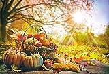 Aliyz 5x3ft Luce solare esterna Autunno Raccolto Scenografia fotografia Mais Zucche in cesto sul pavimento legno Festa del Ringraziamento Sfondo fotografico Panno Vinile Studio fotografico Puntelli