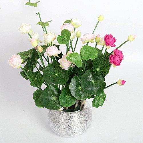 BAIXUE Künstliche Blume Bild Mini Silk Lotus Künstliche Blume 4 Farben Grüne Pflanzen Dekoration für Zuhause Hotel gartentisch...