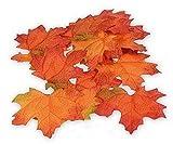Herbstlaub-Ahornblätter, 24 Stück, Herbstblätter Sortierung, Blätter - Maße: von ca. 4 cm - 8 cm
