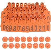 Coolty - Etiquetas para orejas de cerdo (plástico, tamaño mediano, 100 unidades), color verde