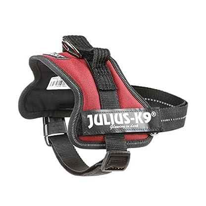Trixie Julius/K9 Power Dog Harness, 3