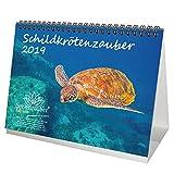 Schildkrötenzauber · DIN A5 · Premium Tischkalender/Kalender 2019 · Schildkröte · Amphibien · Reptilien · Tiere · Wildnis · Natur · Set 1 Grußkarte & 1 Weihnachtskarte · Edition Seelenzauber