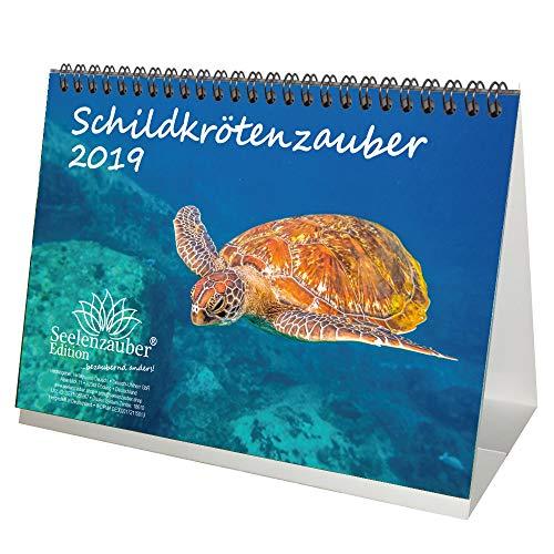 (Schildkrötenzauber · DIN A5 · Premium Tischkalender/Kalender 2019 · Schildkröte · Amphibien · Reptilien · Regenwald · Tiere · Wildnis · Natur · Edition Seelenzauber)