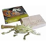 Squelette de Dinosaure Stegosaurus Kit Outil de Fouille Jeu Archéologie Jouet