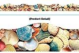 Sea Shells Terrific Trimmers