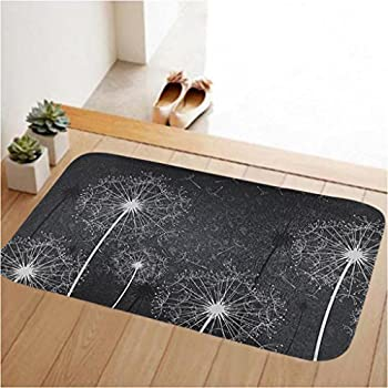 Tolulu soft doormat low profile door mat door indoor for Indoor front door mats
