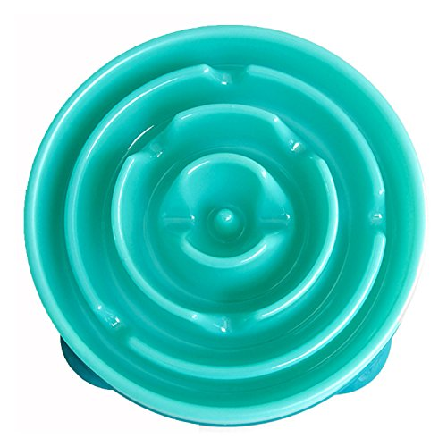 DAN-SPEED-Slow-Feed-Puzzle-Dog-Bowl-Coral-Teal
