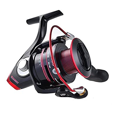 KastKing Sharky II Fishing Reel - Smooth Spinning Reel - 41.5 Lb Carbon Fiber Max Drag - 10+1 Superior Ball Bearings-Brass Gears - Top Quality at An Affordable Price! by Eposeidon