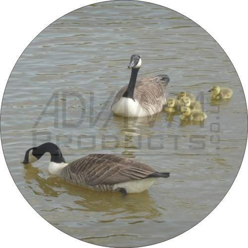 ganse-und-goslings-kuhlschrank-magnet-weihnachtsgeschenk-ref-ab-g2fm