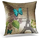TEPEED Throw Pillow Cover Purple French Lilac Modern Vintage Paris Eiffel Tower Blue Botanical Decorative Pillow Case Home Decor Square 18 x 18 Inches/45 x 45cm Pillowcase
