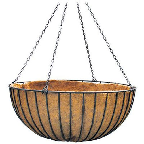 Border Concepts 72252 Liberty Hanging Basket, de 14 pouces, Noir