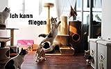 Anpro Katzenspielzeug Interaktives Spielzeug mit Federn, Katze Spielzeug mit 2 Katzenangel Ersatzfedern, Dunkellila, EINWEG - 6