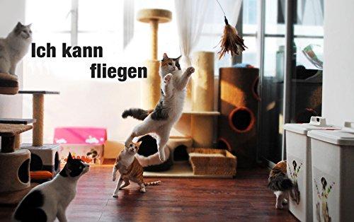Anpro Katzenspielzeug Interaktives Spielzeug mit Federn, Katze Spielzeug mit 2 Katzenangel Ersatzfedern, Dunkellila - 6