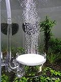 Pollen Glas CO2 Diffusor mit U Pipe für Aquarium Gepflanzt Tank (Φ40mm)