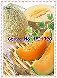 Go Garden 10Pcs Super Big Sweet Honey-Dew Melon Semillas Hami Melon Semillas Frutas Semillas Cantalupo Melón Jumbo Melón Herencia Suculentas Plantas: 1