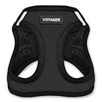 "Voyager Step-In Air Dog Harness - All Weather Mesh, Step In Vest Harness for Small and Medium Dogs by Best Pet Supplies - Black Base, Medium (Chest: 16"" - 18"")"