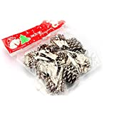 Ouken 6 Stück natürliche kiefernkegel 5,5 cm für Geschenk Baum-Party hängende Dekoration