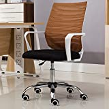 Canyi Z Computer Stuhl Home Meeting Bürostuhl up/Down Stuhl Drehstuhl Mitarbeiter Modern Simple Seat Mahjong Atmungsaktives Mesh Stuhl (Farbe : D)