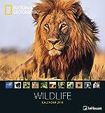 Wildlife 2018 - National Geographics Fotokalender, Naturkalender, Tierkalender  -  45 x 48 cm