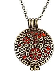 Aleación de Vendimia Difusor de Aceites Esenciales Collar de Perfume de Aromaterapia Medallón