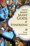 Many Many Many Gods of Hinduism: Turning believers into non-believers and non-believers into believers (English Edition)