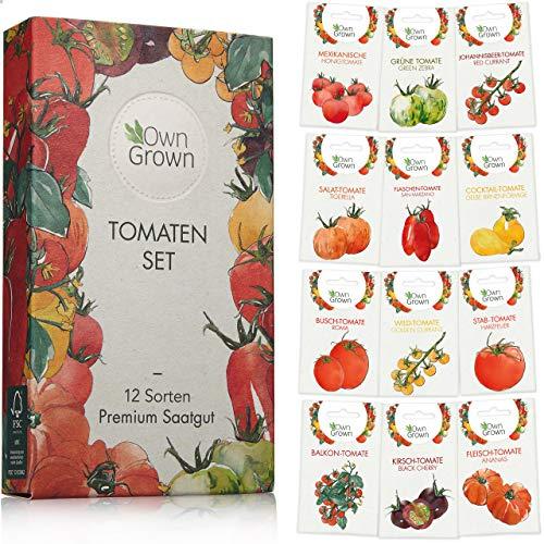Tomaten Samen Set mit 12 Sorten Tomatensamen für Garten und Balkon: Premium Tomaten Anzuchtset - Köstliche, bunte und alte Tomatensorten von OwnGrown - Garten Samen Gemüse als praktisches Tomaten Set