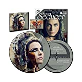 Sonic Seducer 11-2017 Limited Edition + exkl. Picture Vinyl zum Album Synthesis von Evanescence + 2 CDs, u.a. eine Exklu