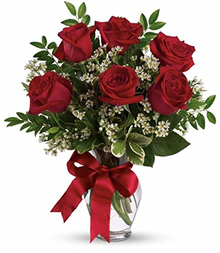 oferta-otono-ramo-de-6-rosas-rojas-frescas-envio-urgente-24h-tarjeta-con-nota-personalizada-gratis-s