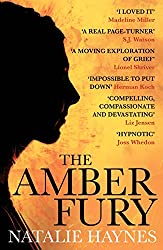 The Amber Fury (English Edition)