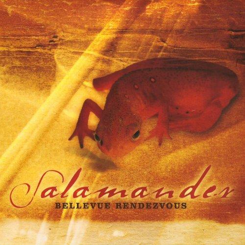 The Man In The Brown Hat / La Sensonette Salamander Hat