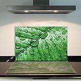 DAMU Ceranfeldabdeckung 1 Teilig 80x52 cm Herdabdeckplatten aus Glas Blatt Grün Elektroherd Induktion Herdschutz Spritzschutz Glasplatte Schneidebrett