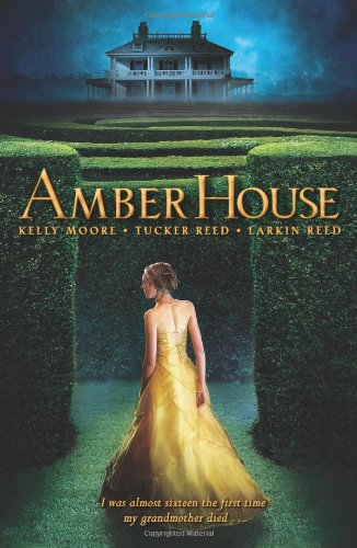 amber-house