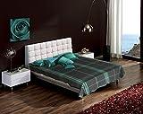 Raymond Home Woolen Double Blanket, Gree...