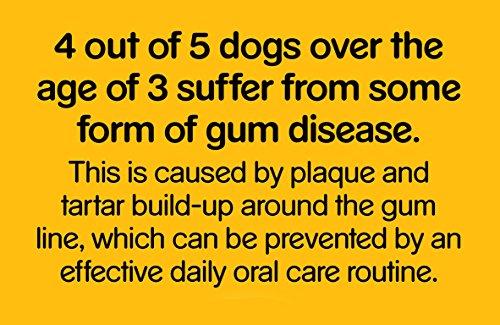 Pedigree DentaStix Fresh Hundesnack für kleine Hunde (5-10kg), Zahnpflege-Snack mit Eukalyptusöl und Grüner Tee-Extrakt, 10 Packungen je 7 Stück (10 x 110 g) - 6