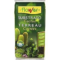 Flower 80016 Substrato bonsáis, 5L, Marrón, 23x4x40 cm
