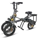 Bicicletta elettrica Pieghevole a Tre Ruote - Lega di Alluminio Aeronautica Pieghevole E-Bike a Batteria al Litio