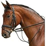 Martingal, braun Pony
