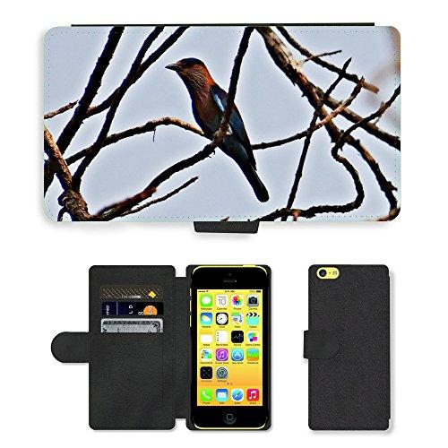 Just Mobile pour Hot Style Téléphone portable étui portefeuille en cuir PU avec fente pour carte//m00139547Rouleau indien coracia bengalensis//Apple iPhone 5C