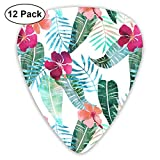 Island Goddess 2 White 5x 5 Repeat_1294 Classic Celluloid Picks, 12-Pack, For Electric Guitar, Acoustic Guitar, Mandolin, And Bass