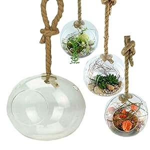 xxl vase boule en verre suspendre et d corer avec. Black Bedroom Furniture Sets. Home Design Ideas