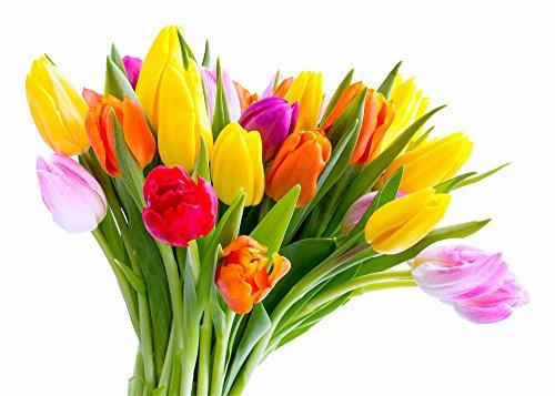 consegna-mazzo-fiori-freschi-20-tulipani-bouquet