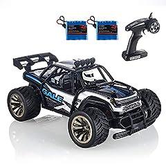 Idea Regalo - RC Auto, KOOWHEEL 2.4Ghz Auto Radiocomandata RC CAR 1:16 2WD Alta Velocita Monster Truck Telecomando con 2 Batterie Ricaricabili (1512 RC Auto)