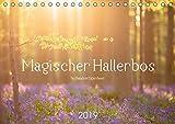 Magischer Hallerbos (Tischkalender 2019 DIN A5 quer): Märchenhaftes Naturschauspiel der blühenden Hyazinthen im Stadtwald von Halle (B). (Monatskalender, 14 Seiten ) (CALVENDO Natur)