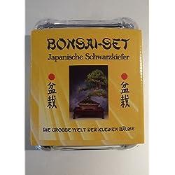 Tropica - Bonsai-Set - Japan. Schwarzkiefer mit Samen, Keramikschale, Broschüre und Gewächshaus