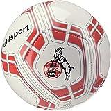 1. FC Köln Miniball 2018/2019